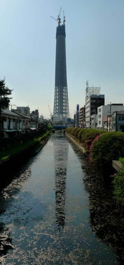 Skytree_11